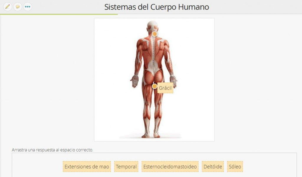 Imágenes con Preguntas - Cuerpo Humano